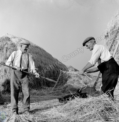 Messr's J. & W. King, Haymaking, Wombleton